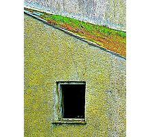 The Mossy Roof Photographic Print