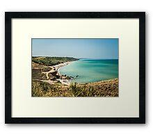 ital Framed Print