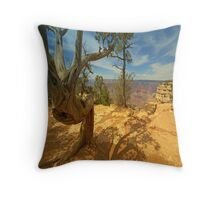 """ Look At Me "" Throw Pillow"