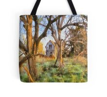""" Old House Painted "" Tote Bag"