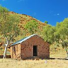 The Outback Outbuilding by Penny Smith