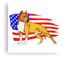 American Staffordshire Canvas Print