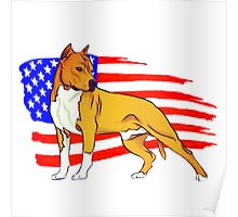 American Staffordshire Poster