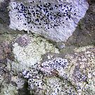 sandstone by Floralynne