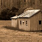 Farm Shed in Sepia, Fentonbury, Tasmania by clickedbynic