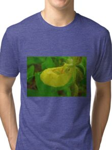 Yellow Lady Slipper Tri-blend T-Shirt