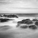 The Blowhole Track - Flinders by Jim Worrall