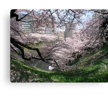 Springtime In Tokyo Canvas Print