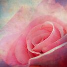 Rose pink by RosiLorz
