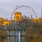 St James's Park, London by mhfore