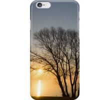 Peaceful Blues and Golds  iPhone Case/Skin
