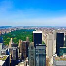 Central Park by James Anthony