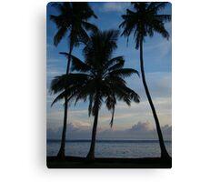 Three Beach Palms Canvas Print