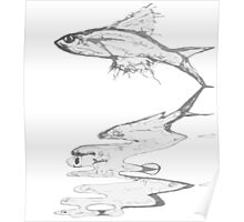 Fish Reflection Poster
