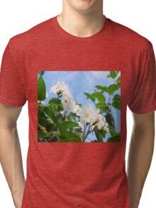 Anacahuita Blossoms  Tri-blend T-Shirt