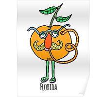 Florida's Crazy Poster