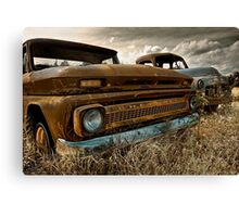 Brothers from another mother Canvas Print