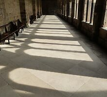 Shadows in the cloister by spikeybwoy