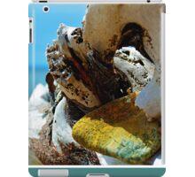 Bras d'Or Stones, as is. iPad Case/Skin