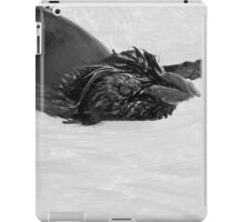 Rock Hopper Penguin 3 iPad Case/Skin