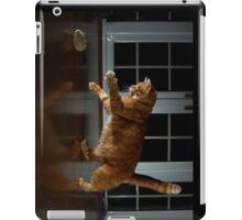 Playful cat iPad Case/Skin