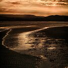 SUNSET AT LOW TIDE by Michael Carter