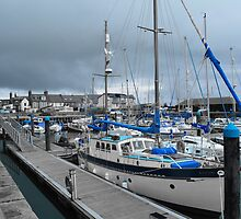 Arbroath Harbour Blue  by markw123