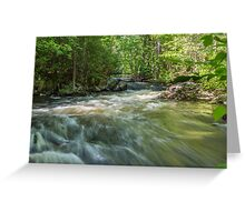 Blakeney Falls Greeting Card