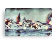 Flight Series II:  Flamingo Flight Canvas Print