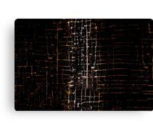 Cracked Grunge Texture Canvas Print