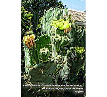 Cactus Politics Photographic Print