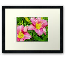 Love Flowers 2 Framed Print