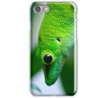 Lagarto 3 Zoo iPhone Case/Skin