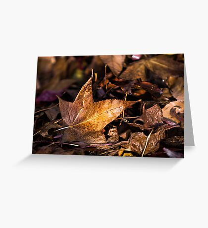 Death of Autumn Greeting Card