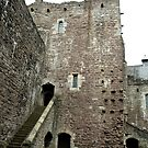 Castle Doune, Scotland by hans p olsen