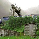 Back Garden Shed South Wales UK. by Andreav Nawroski