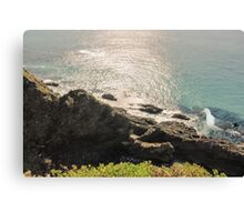 Good morning Forster Canvas Print