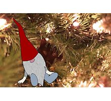 T is for Tomte Photographic Print