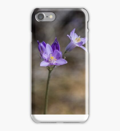 Mexican Hat Coneflower iPhone Case/Skin