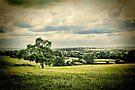 Toot Hill by Nigel Bangert