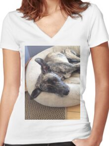 cute sad puppy brindle dog Women's Fitted V-Neck T-Shirt