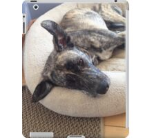 cute sad puppy brindle dog iPad Case/Skin