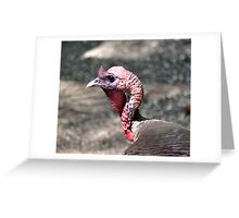Turkey Greeting Card