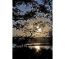Bayou Sunset Photographic Print
