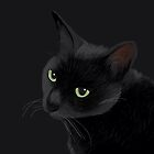 Black cat in the dark by BATKEI