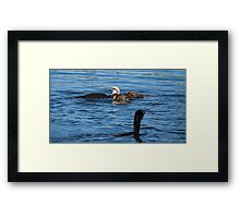 What To Do what to do Framed Print