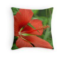 Texas Star(Hibiscus) Throw Pillow