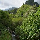 Iao Valley Monument by Lucinda Walter