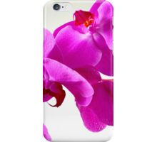 Deep Pink Greenfield Sweetheart Orchids iPhone Case/Skin