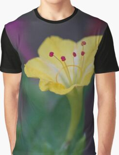 Early Evening Colors Graphic T-Shirt